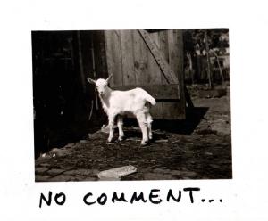 Sofia Mansuri, #nocomment, Edding auf Fotopapier, 2020